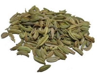 fennel-seeds-01