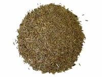 grass-seed-162-p